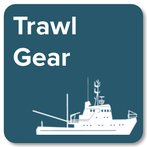 Trawl Gear